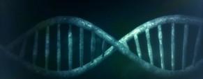 Biotechnologies et inventivité humaine : nécessité rationnelle et exigence éthique