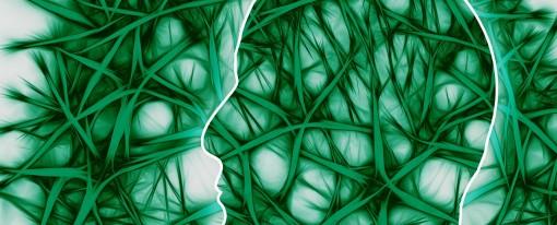 AAC : Esthétique et neurosciences