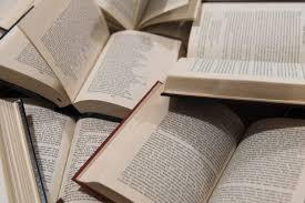 Entre théorie de la littérature et neurosciences