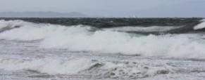 ON THE NORTH SEA SHORE